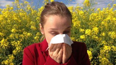 Photo of El polen llega a Almería, qué debes hacer