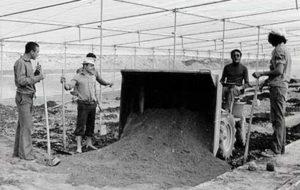 Construcción de un invernadero en la provincia de Almería.