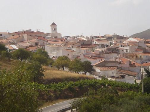 vista de Alcudia de Monteagud