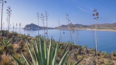Photo of Almería, un precioso viaje de revista