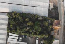 Jardín botánico Almunya del sur