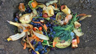 Photo of Consejos para reducir el desperdicio de alimentos en el hogar