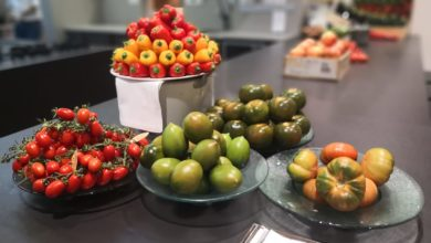 Photo of Diez motivos para presumir de la agricultura bajo invernadero