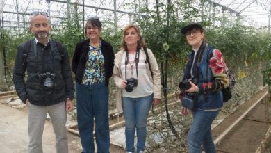 Photo of Los invernaderos, protagonistas del I Encuentro 'Almería desde la imagen'