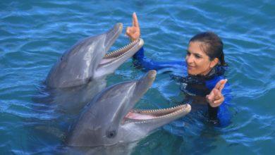"""Photo of Luna Peña: """"quise ser entrenadora de delfines y lo he conseguido"""""""