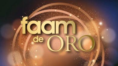 Photo of La FAAM entrega sus galardones de oro con motivo del Día Internacional de la Discapacidad